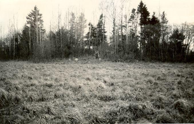 Hiiemägi - kagust. Foto: E. Väljal, 20.10.1986.