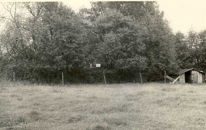 Kivikalme. Foto: H. Heinlo, 1987 september.