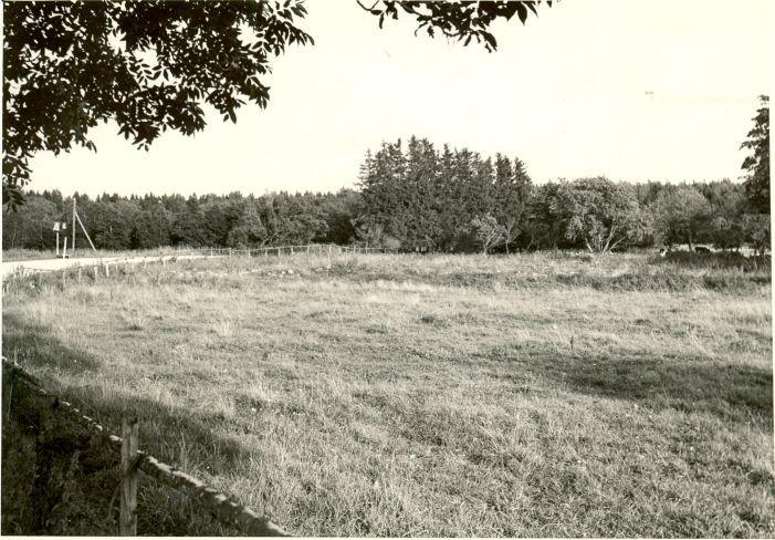 Asulakoht - loodest. Foto: A. Sillasoo, 30.08.1982.