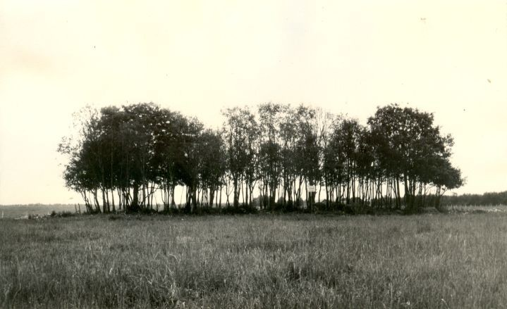 Kivikalme. Foto: H. Joonuks, 1976.