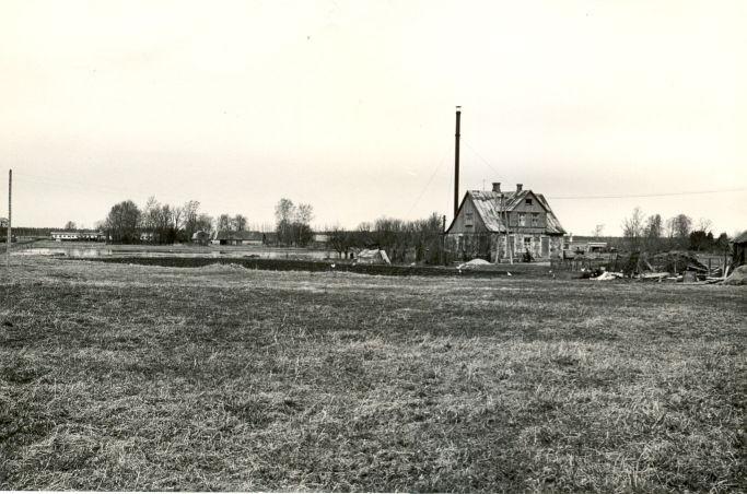Asulakoht - kagust. Foto: O. Multer, 05.05.1982.