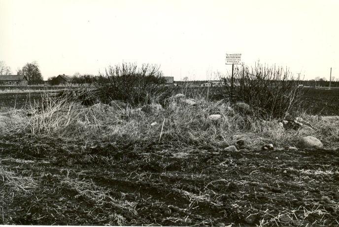 Kultusekivi - lõunast. Foto: O. Multer, 05.05.1982.