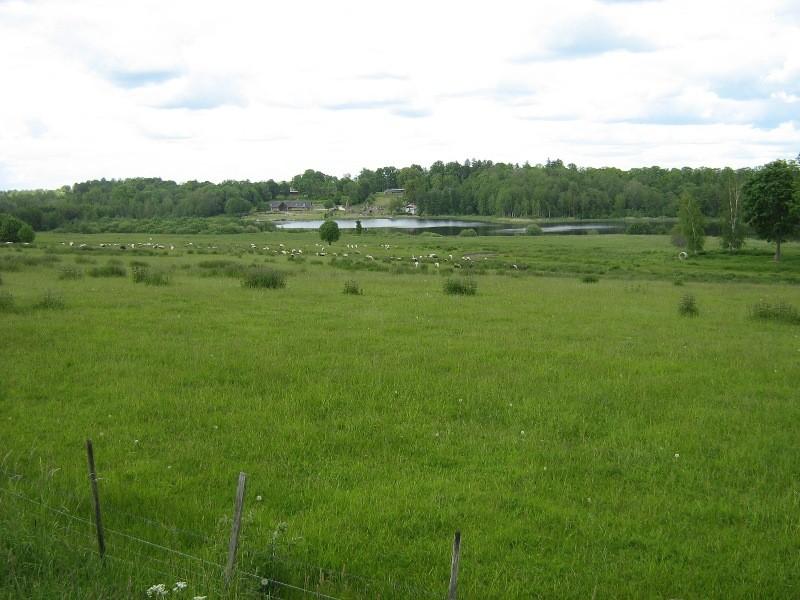 Vaade asulakohale, taamal Karula järv ja mõis. Foto: Anne Kivi, 07.06.2012.