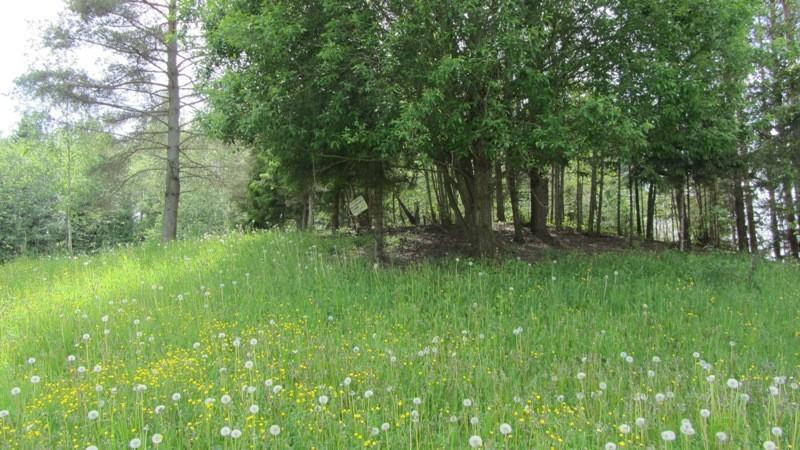 Vaade kalmistule kirdest. Foto: Karin Vimberg, 07.06.2012.