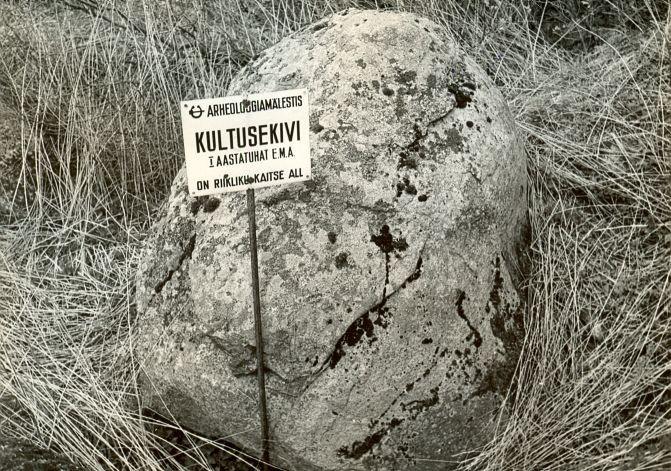 Kultusekivi - lõunast, E. Väljal, 27.apr.1989