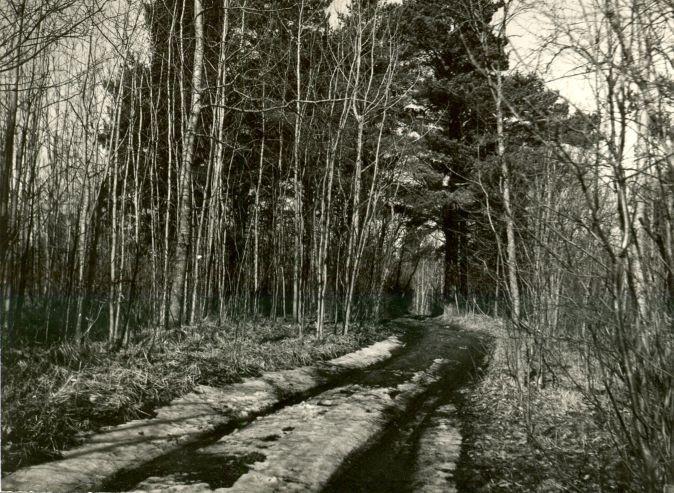 Maa-alune kalmistu - põhjaosa lõunast. Foto: M. Mandel.