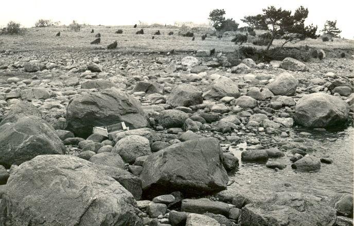 Pelgupaik - edelast. Foto: E. Väljal, 04.05.1981.
