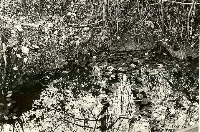 Ohvriallikas - läänest lähivaade. Foto: E. Väljal.