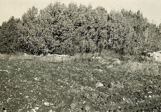 Kivikalme - lõunast, E. Väljal, 2.okt.1985