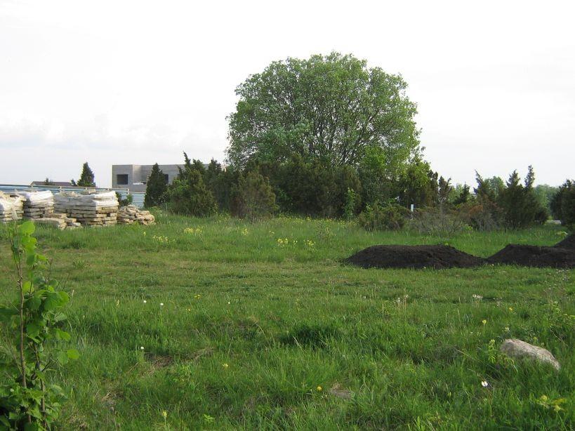 Vaade kirdest, klindi servast, aia tagant.  Autor Ulla Kadakas  Kuupäev  29.05.2007