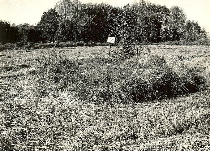 Kultusekivi - kagust, E. Väljal, 2.okt.1985