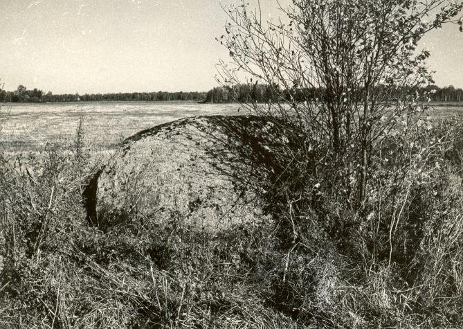Kultusekivi - edelast, E. Väljal, 2.okt.1985