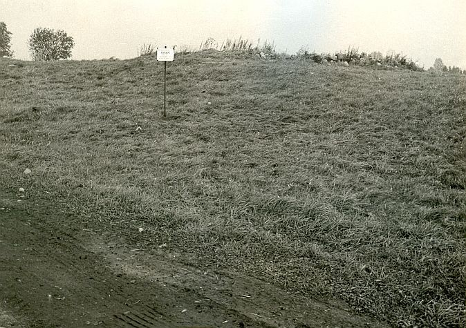 Kivikalme - lõunast. Foto: E. Väljal, 03.10.1985.