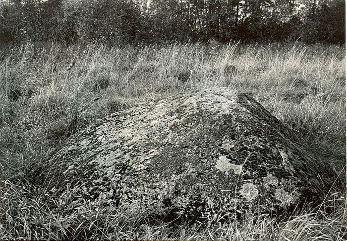 Kultusekivi - kagust, E. Väljal, 3.okt.1985
