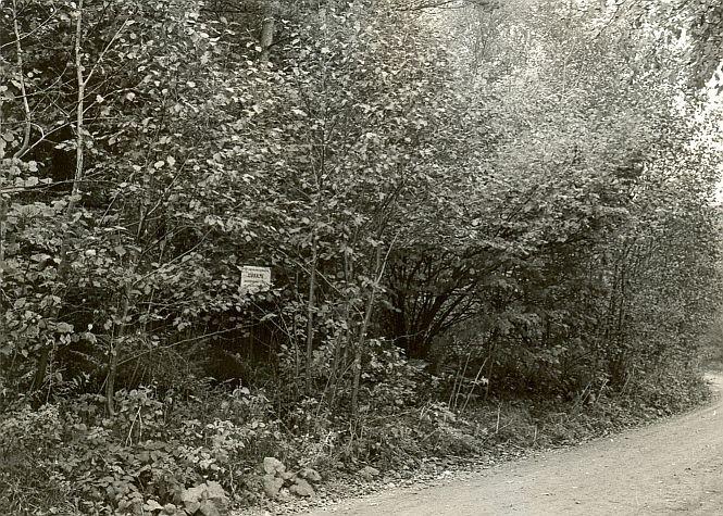 Kivikalme - kagust, E. Väljal, 2.okt.1985