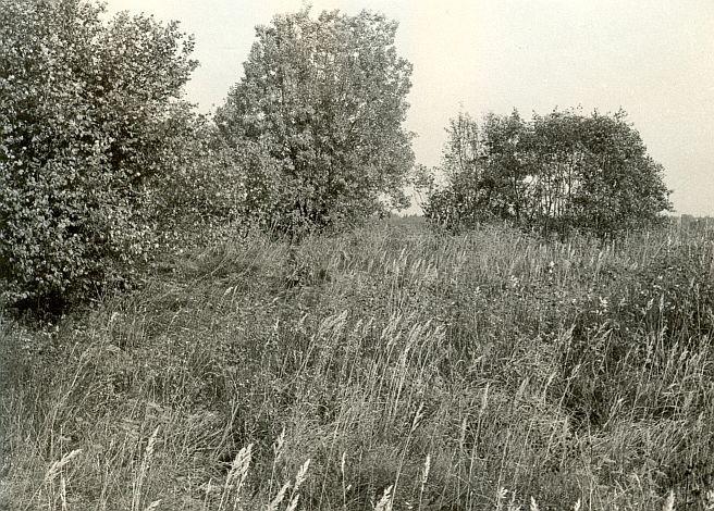Kivikalme - edelast, E. Väljal, 3.okt.1985