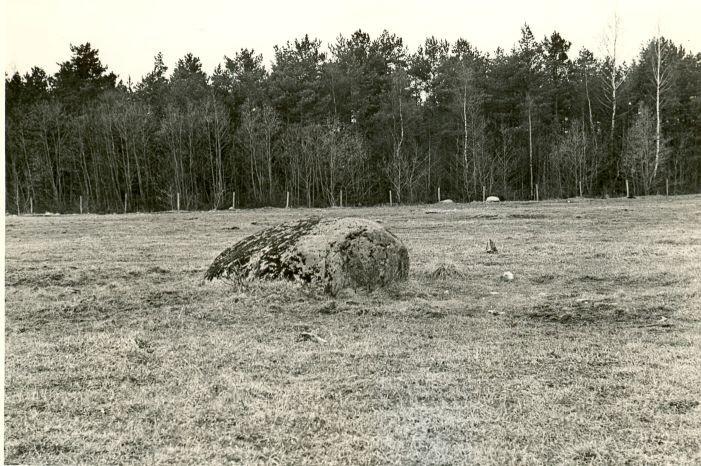 Kultusekivi - A. Sillasoo, kevad 1976