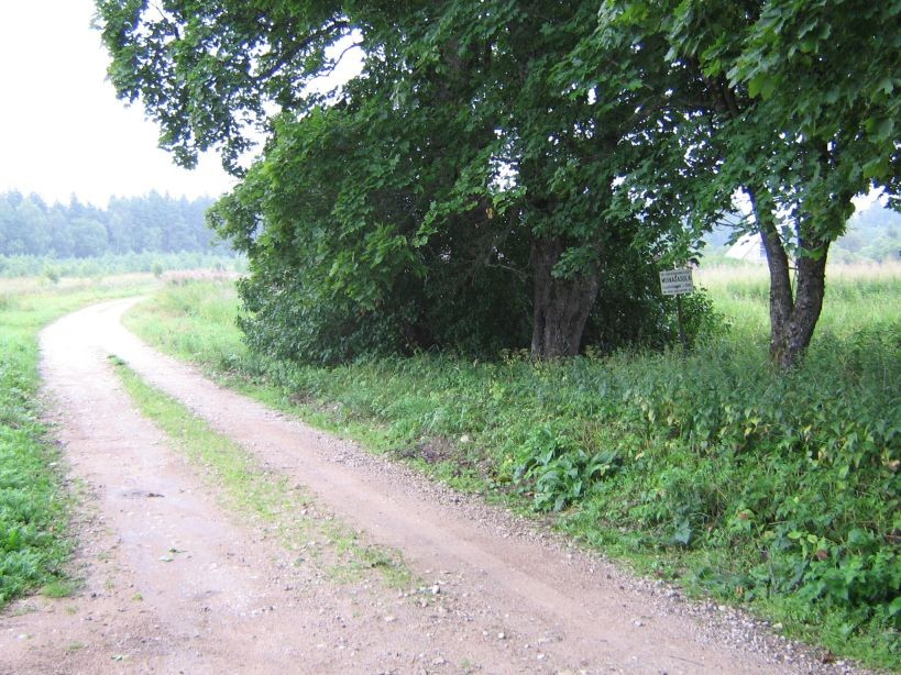 Autor Ulla Kadakas  Kuupäev  27.07.2007