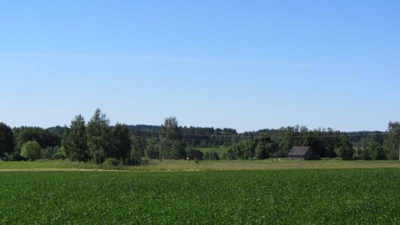 Vaade lohukivile reg nr 12825 ja asulakohale reg nr 12823 Kambja-Sirvaku teelt, st kirdest. Foto: Karin Vimberg, 21.06.2012.