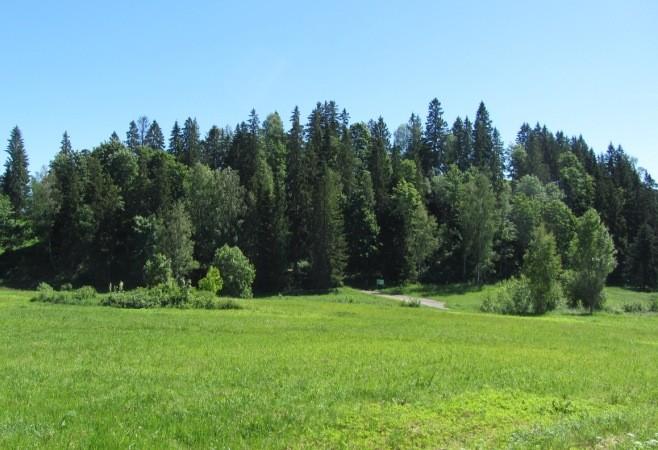 Vaade Otepää linnusele loodest. Foto: Karin Vimberg, 21.06.2012.