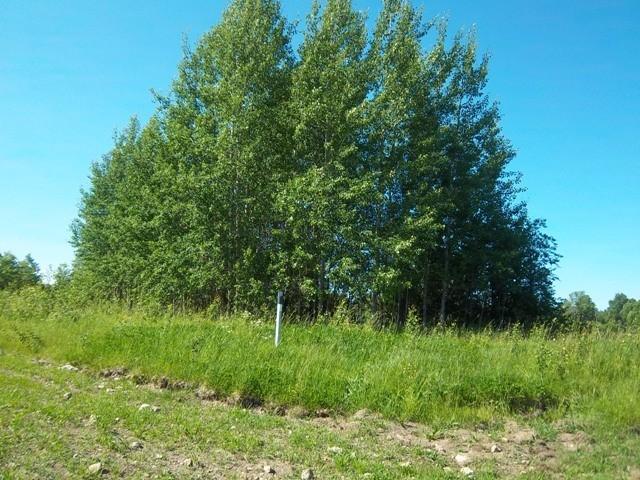 Kalmistu reg nr 12053, vaade kirdest. Foto: K. Klandorf, 22.06.2012.