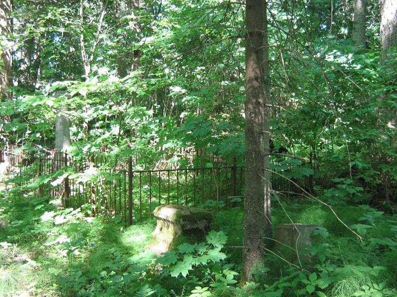 Ainja kalmistul üksikud hauatähised Foto 21.06.2012 Anne Kivi