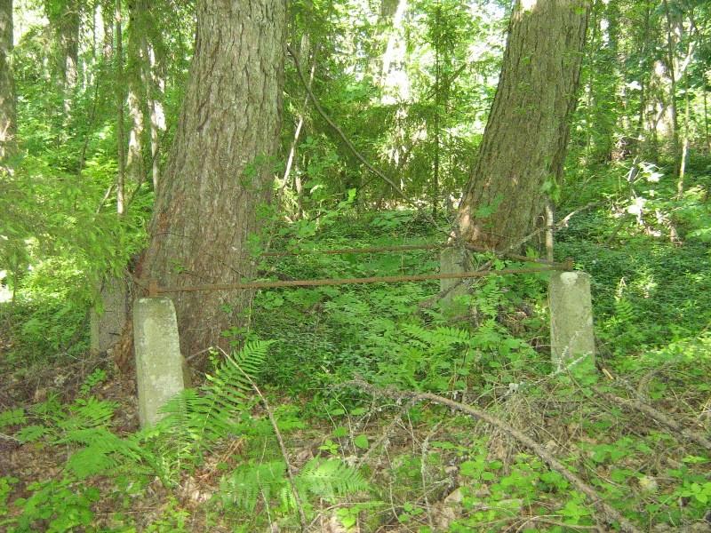 Ainja kalmistu hauatähised kaovad metsa ja võsa sisse Foto 21.06.2012 Anne Kivi