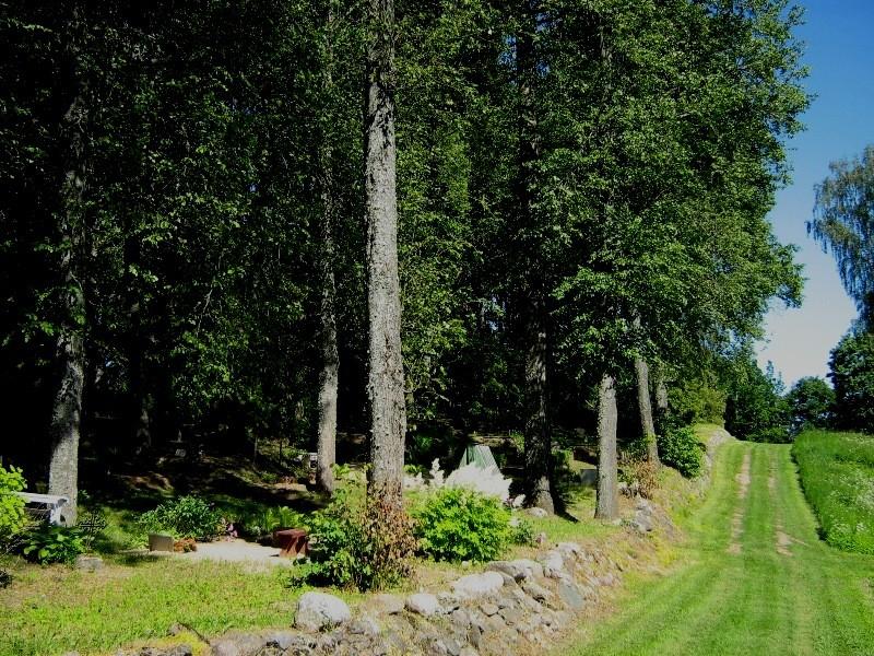 Vaade Rahumäe kalmistule, piirdeks on maakivist aed Foto 21.06.2012 Anne Kivi