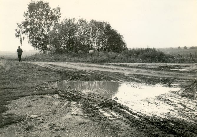 Kivikalme - edelast. Foto: E. Väljal, 1980ndad.