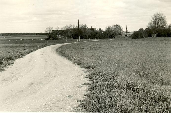Asulakoht, A. Sillasoo, kevad 1979