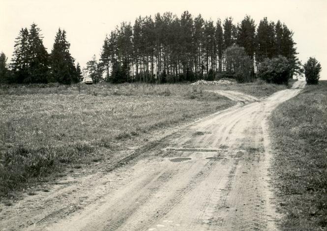 Maa-alune kalmistu - kirdest. Foto: E. Väljal, 11.09.1984.
