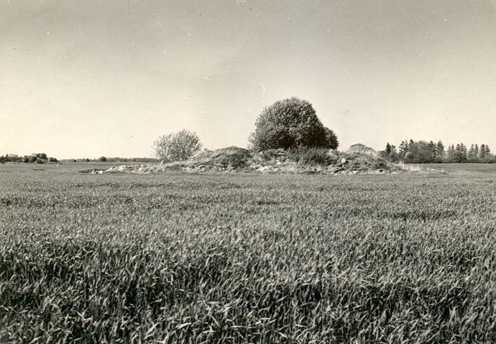 Kivikalme - lõunast, R. Kärner, 3.mai 1990