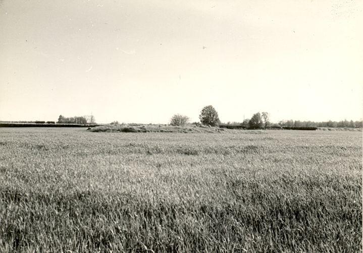 Kivikalme - põhjast, R. Kärner, 3.mai 1990