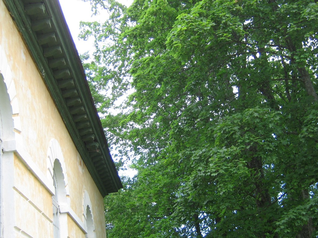 Räpina õigeusu kirik. Puitkarniis laguneb aeglaselt. 26.06.2012 Viktor Lõhmus