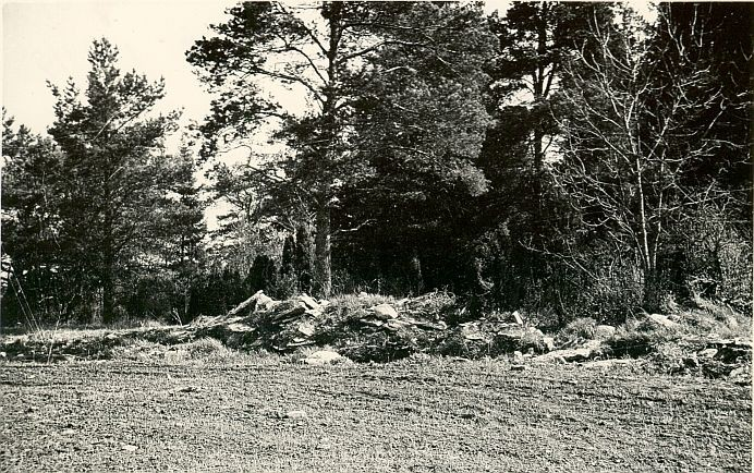 Kivikalme - edelast, A. Lavi, kevad 1979