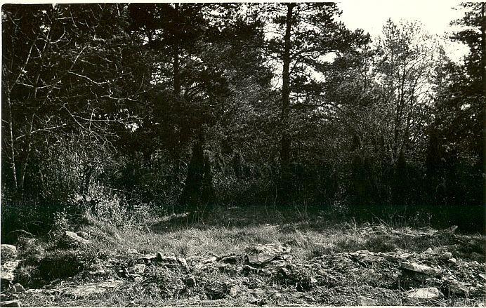 Kivikalme - läänest, A. Lavi, kevad 1979