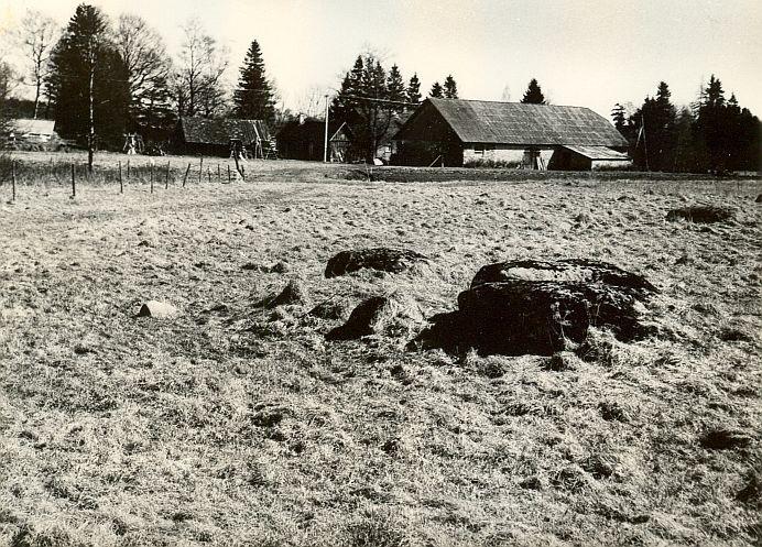 Kultusekivid 18204-18205 - läänest, A. Lavi, 2. mai 1980