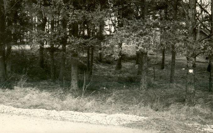 Maa-alune kalmistu - lõunast. Foto: E. Väljal.