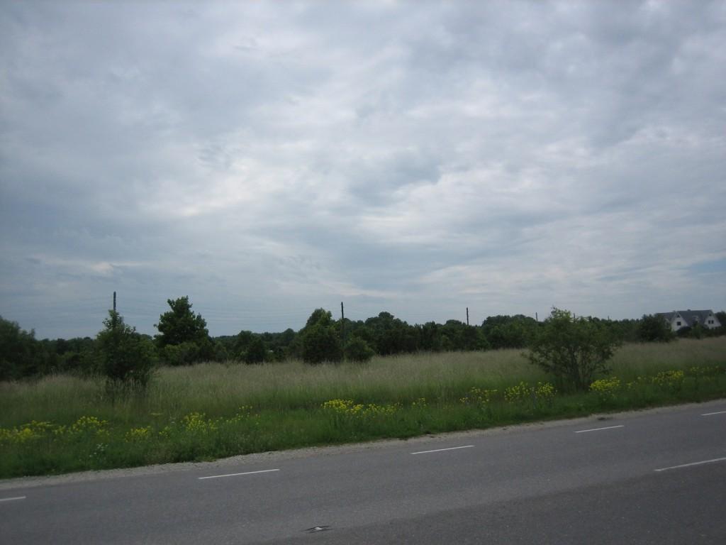 Vaade maanteelt (Tuule tee otsast) läände. Foto: Silja Konsa, 05.07.2012.