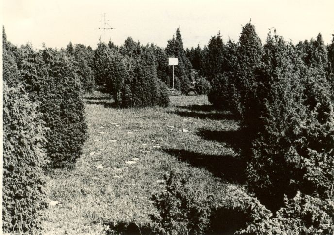 Kivikalmed 18227-18246, H. Joonuks, 1976