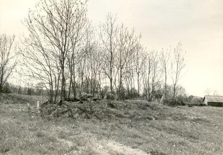 Kivikalmed 18261-18265 - kirdest, R. Kärner, 8.sept.1990