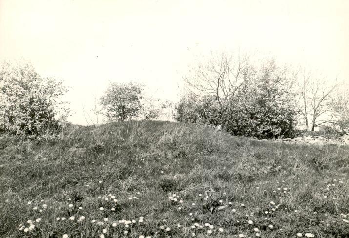 Kivikalmed 18261-18265 - lõunast, R. Kärner, 8.sept.1990