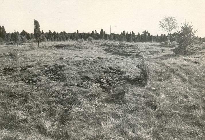 Kivikalmed 18274-18303 - kirdest. Foto: R. Kärner, 08.05.1990.