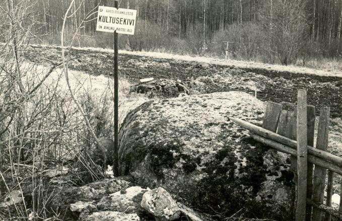 Kultusekivi - loodest, E. Väljal, 26.mai 1985
