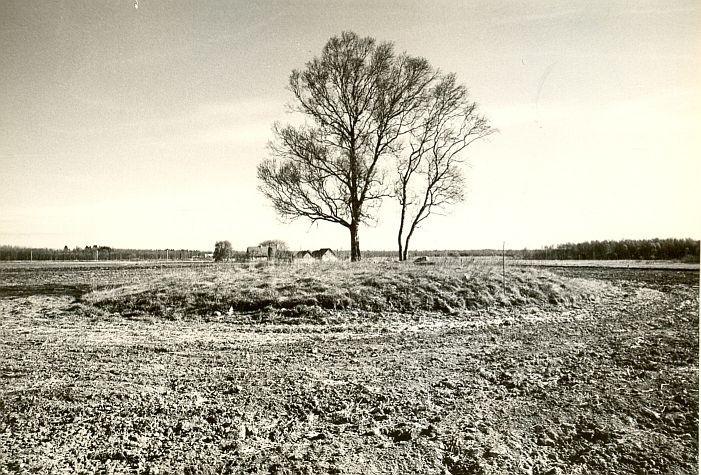 Kivikalme - lõunast, M. Pakler, 16.mai 1988