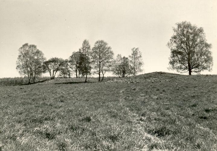 Kivikalmed 18316-18319 - loodest, R. Kärner