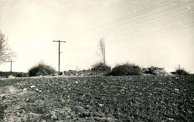 Kivikalme - lääneloodest, A. Lavi, 20.apr.1980