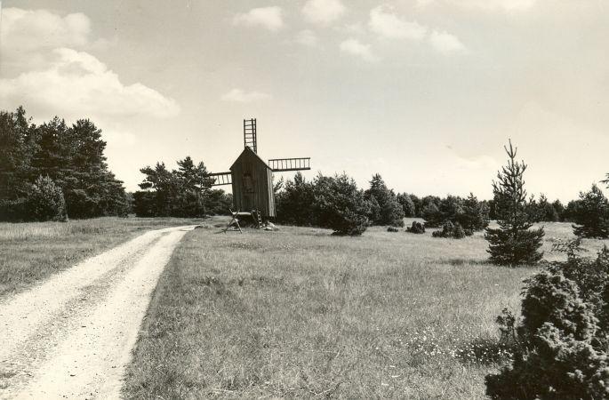 Maa-alune kalmistu  Autor M. Pakler  Kuupäev  14.07.1981