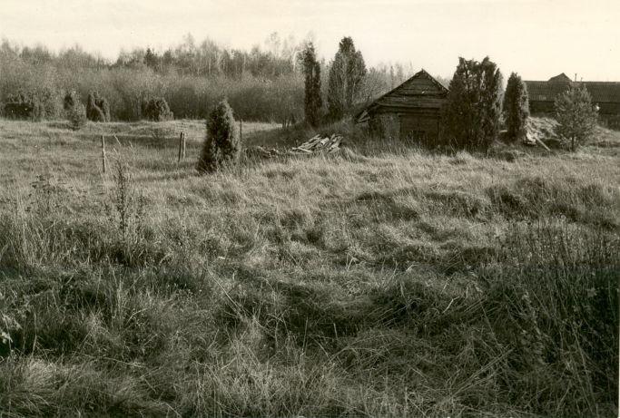 Maa-alune kalmistu - loodest. Foto:  E. Väljal.