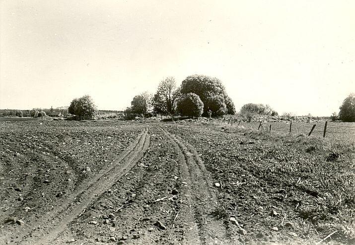 Kivikalme - edelast, A. Lavi, 27.okt.1980